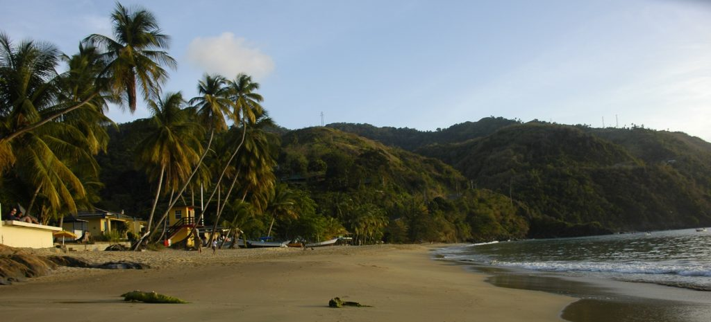castara beach view Tobago beach town