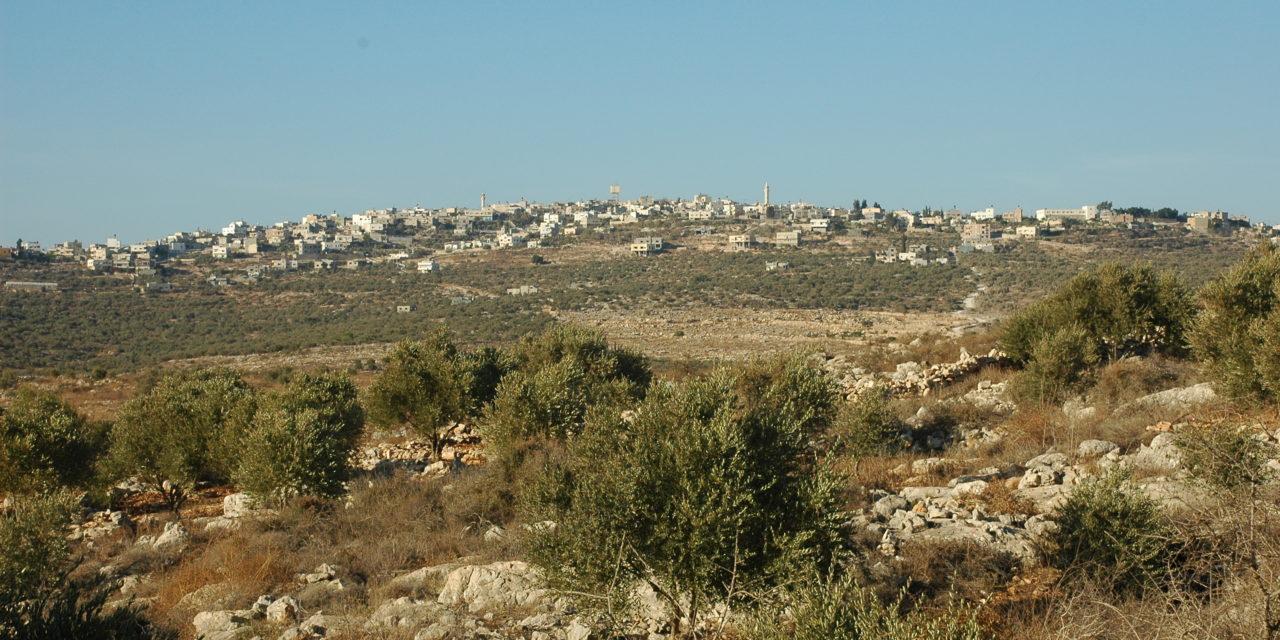 Volunteer in the West Bank