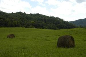 folk school hay bails