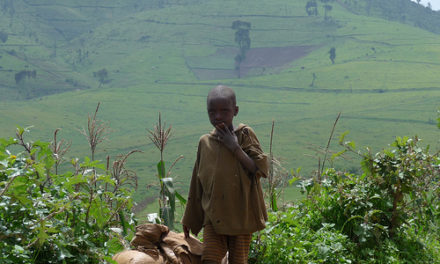 Working Notes from Rwanda