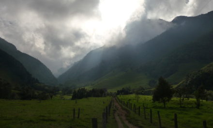 Photo of the Week: Cocora Valley Colombia