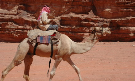 Photo of the Week: Bedouin Camel Driver