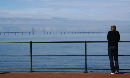 Photo of the Week: Öresund Bridge