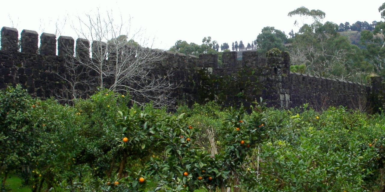Oranges and Stalin on the Black Sea, Batumi, Georgia