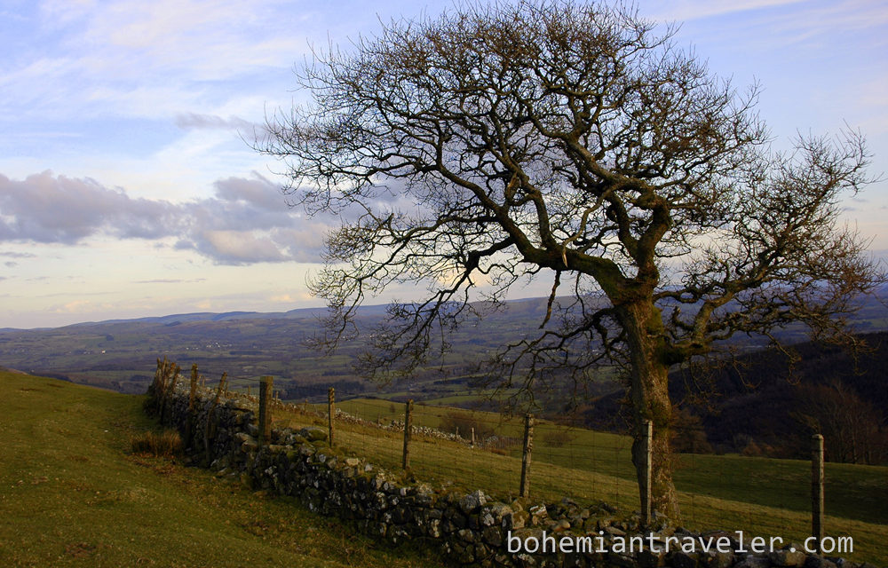 Photo of the Week: Mid-Wales Countryside