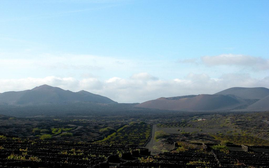 Exploring Lanzarote as a Wine Destination