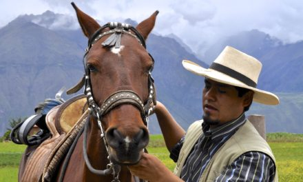 Horsing Around the Other Inca Trail