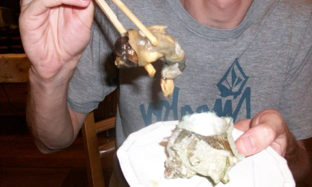 10 Essential Japanese Eating Experiences