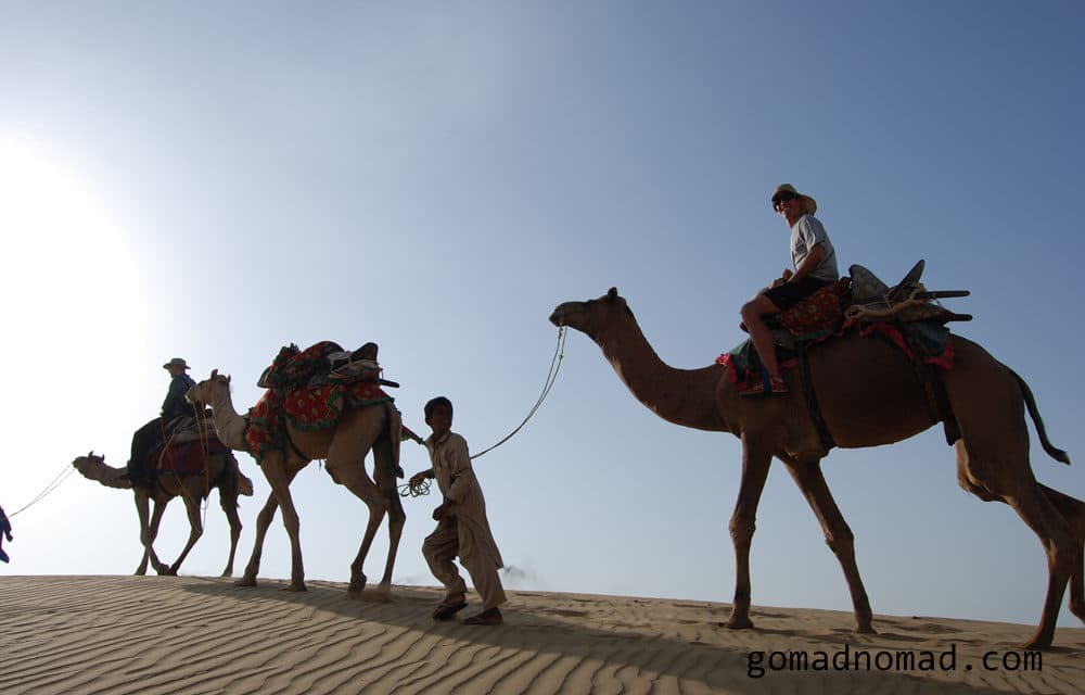 Photo of the Week: Rajasthan Camel Safari