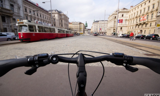 Vienna By Bike: Beyond the City Center