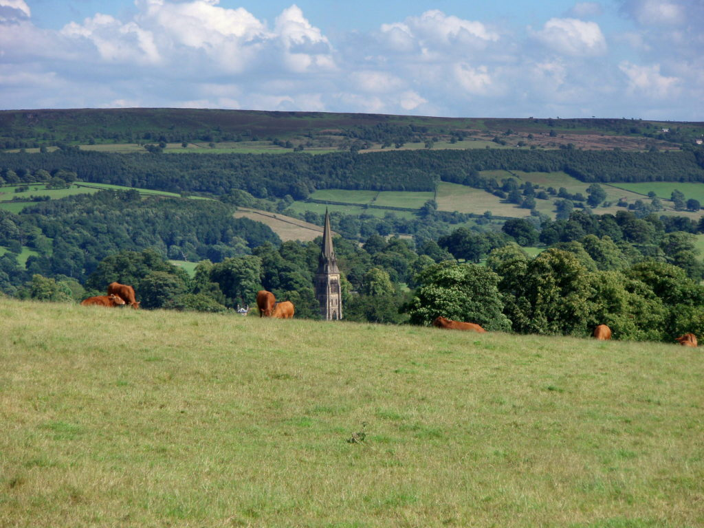 Photo of the Week: The Peak District England