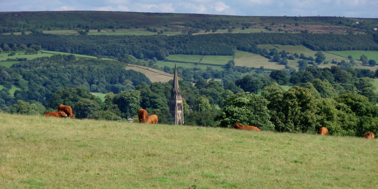 Photo of the Week: The Peak District, England