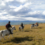 horseback riding in mongolia