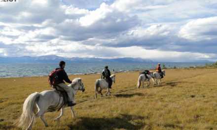 Ask GomadNomad: Best Places for Riding Horses in Asia?