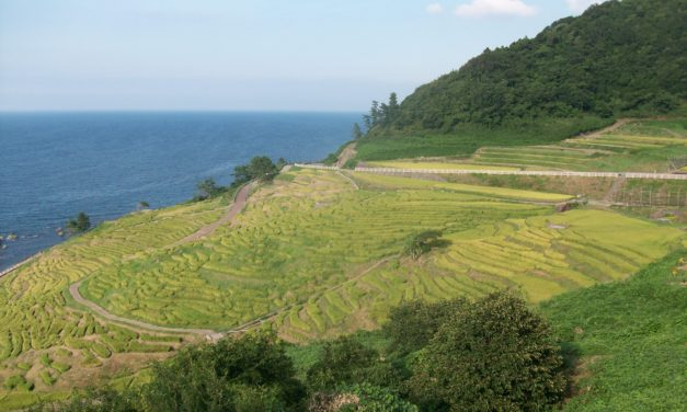 Headed West: Rural Travel in Japan's Noto Peninsula