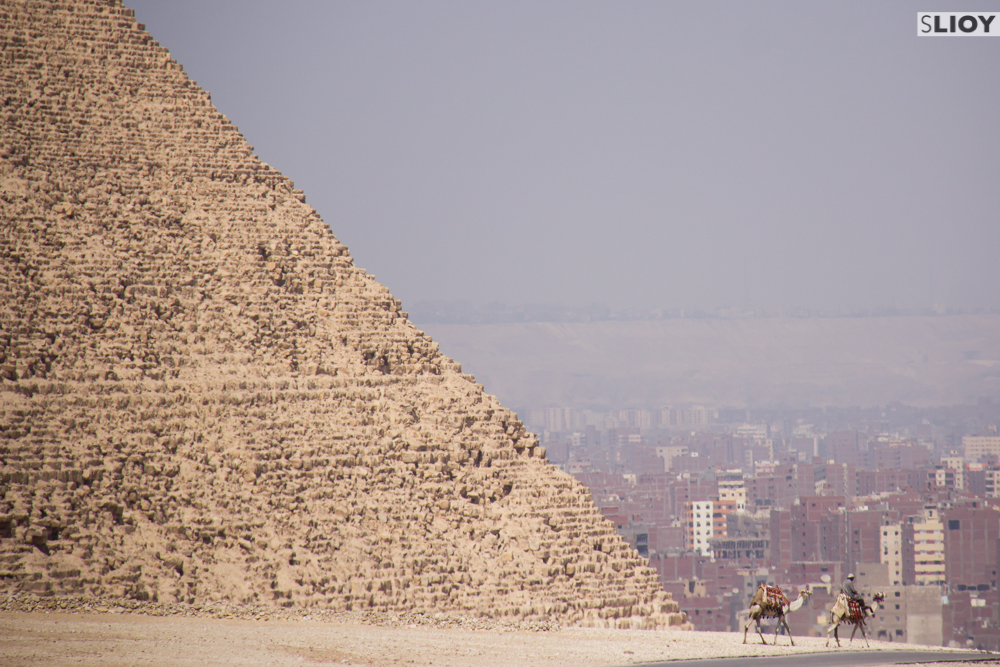 pyramids and camel rider