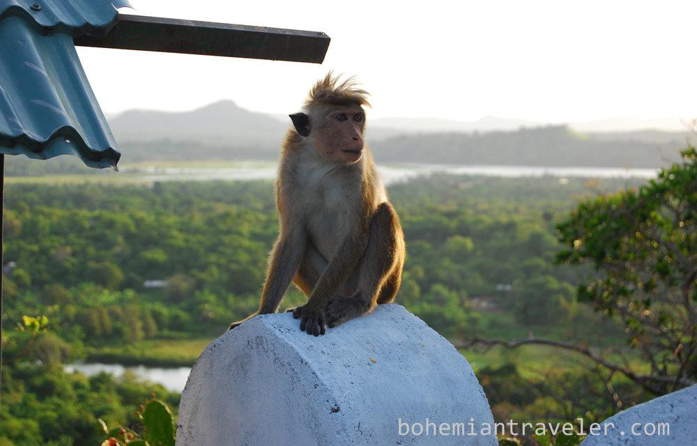 Ask GoMad Nomad: Travel to Sri Lanka