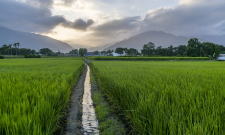 Spotlight on: Travel to Taiwan