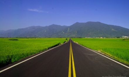 Photo of the Week: The Green Road of Paradise