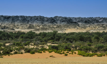 Photo of the Week: Dry Rivers of Namibia
