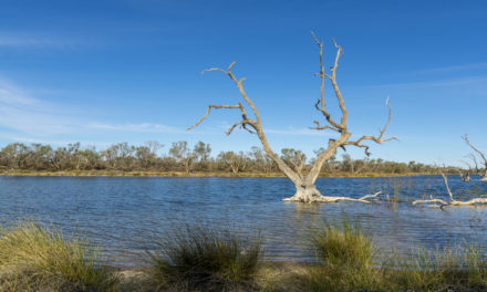 19 Photos that will make you want to Visit Outback Queensland