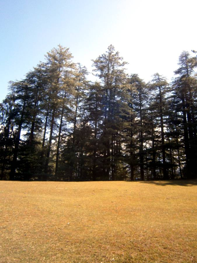 Journeying to Great Himalayan National Park