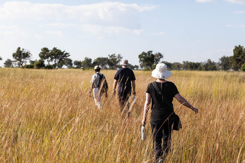 A Walking Safari in Africa