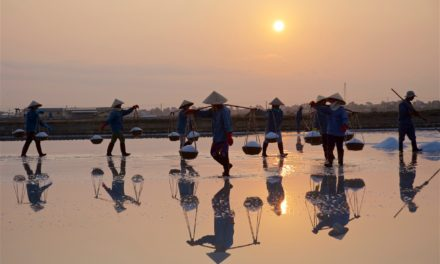 Photo of the Week: Hon Khoi Salt Fields in Vietnam