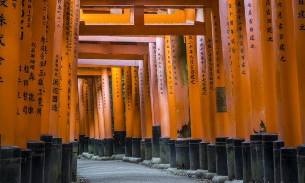 Photo of the Week: Fushimi Inari Shrine