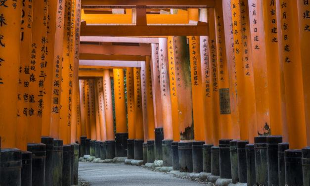 Photo of the Week: Fushimi Inari Shrine