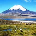 Traveling Chile on a Budget