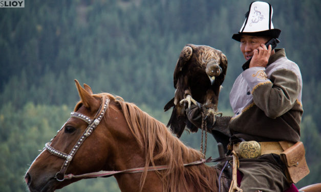 Photo of the Week: World Nomad Games 2014