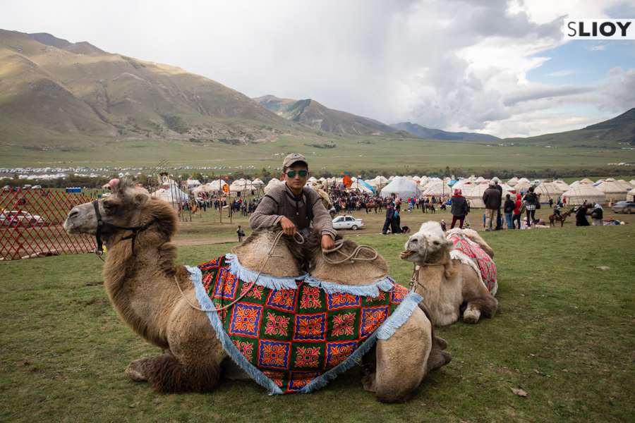 Camel rides at Jailoo Kyrchyn during the 2016 World Nomad Games in Kyrgyzstan.