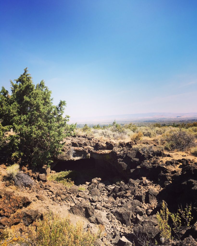 Likely Lava Beds Landscape