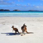 Western Australia: Esperance and Cape Le Grand National Park