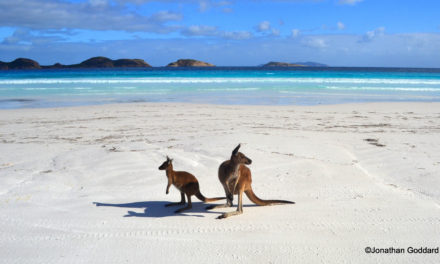 Western Australia: Esperance and Cape Le Grand National Park