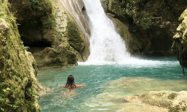 Your Guide to a Cebu Layover: Sharks, Waterfalls, and Coconuts