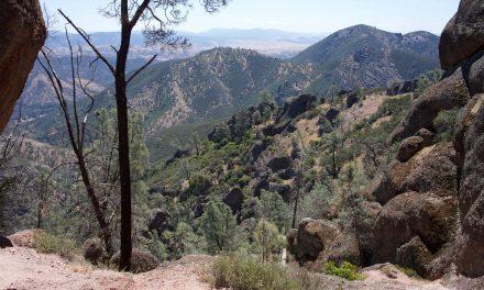 SPOTLIGHT ON: Pinnacles National Park, CALIFORNIA