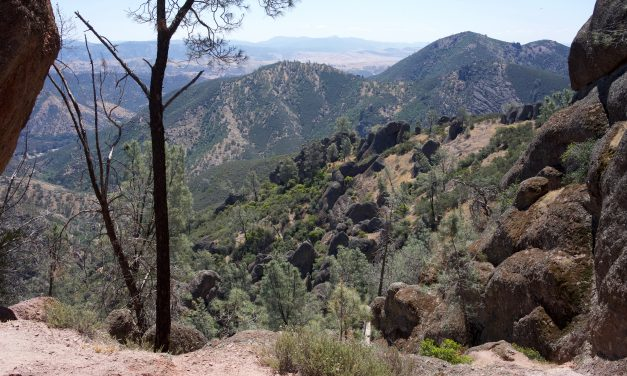 SPOTLIGHT ON: Pinnacles National Park, CALIFORNIA