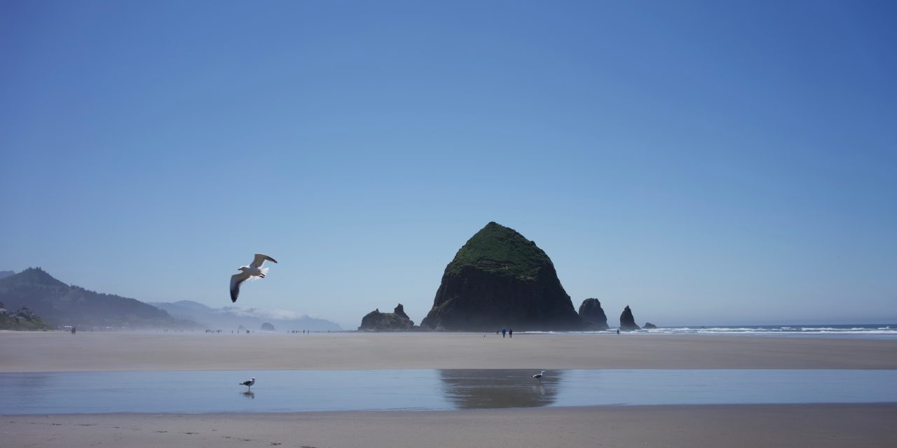 photo of the week: CANNON BEACH, OREGON