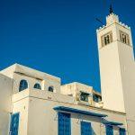 How to Visit Sidi Bou Said, Tunisia