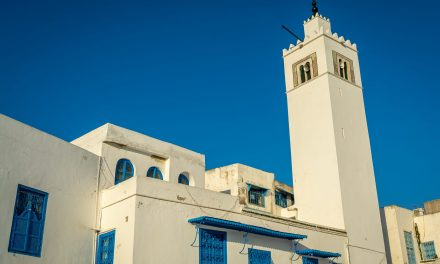 How to Visit Sidi Bou Said, Tunisia