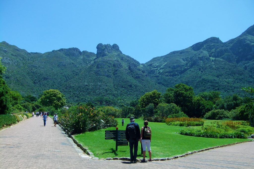 things to do in cape town kirstenbosch gardens
